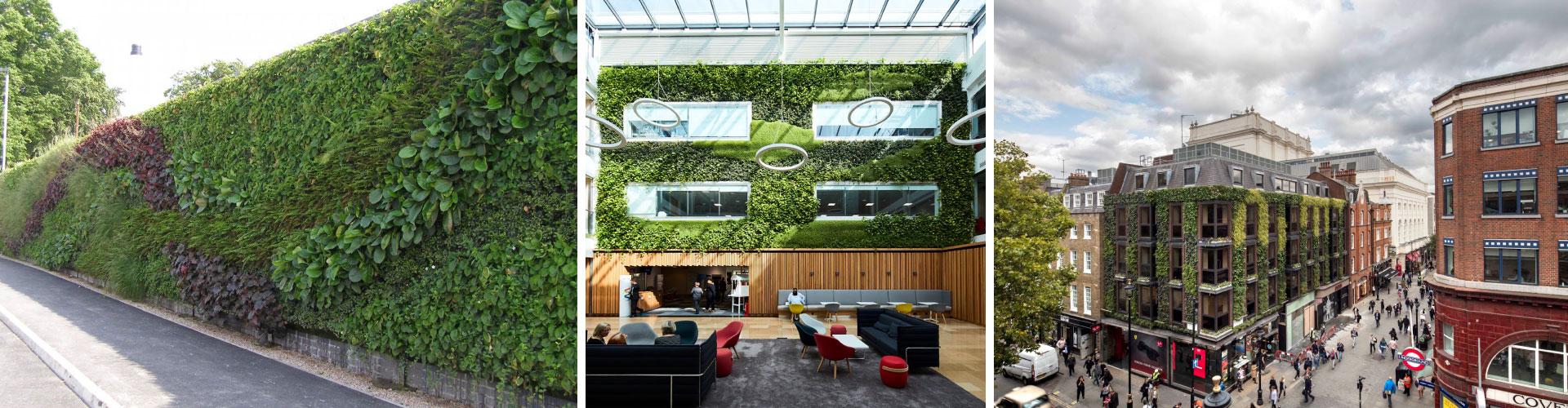 Product Slide Living Walls